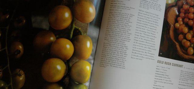 tomatboken